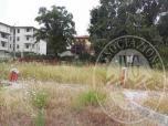 Immagine di Terreno edificabile in Reggio Emilia (RE)