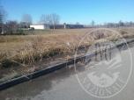 Immagine di Terreni attualmente non edificabili a Cavazzoli, Reggio Emilia (RE)