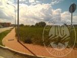 Immagine di Tre lotti di terreno edificabile in Suzzara (MN)