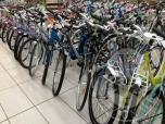 Immagine di 580 biciclette da uomo, donne bambino marche diverse