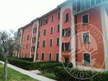 Immagine di Appartamento arredato al piano terzo con cantina in Tremosine sul Garda (BS)