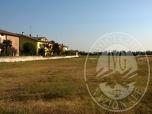Immagine di Piena proprieta' di terreno in Cella, Reggio Emilia (RE)