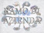 Immagine di RAMO DI AZIENDA PER L'ESERCIZIO DELL'ATTIVITA' EDILE DI COSTRUZIONE E RISTRUTTURAZIONE