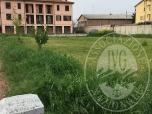 Immagine di Lotto di terreno edificabile in Fabbrico (RE)