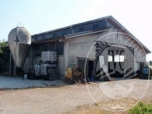 Immagine di Fabbricato ad uso stalla con terreno agricolo seminativo arborato in Guastalla (RE)