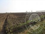 Immagine di Terreni agricoli in Guastalla (RE)