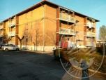 Immagine di Appartamento con autorimessa in Rio Saliceto (RE)