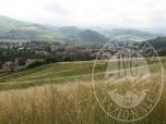 Immagine di Terreni agricoli in Castellarano (RE)