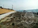 Immagine di Lotto edificabile a destinazione residenziale in Castellarano (RE)