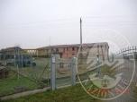 Immagine di Unita' abitativa in villetta abbinata su 2 piani con area cortiliva, taverna e garage triplo in Poviglio (RE)