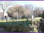Immagine di Lotto di terreno edificabile in Vetto D'Enza (RE)