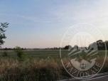Immagine di Cinque distinti appezzamenti di terreno edificabili in Cavriago (RE)
