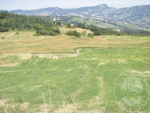 Terreni agricoli in Toano (RE)